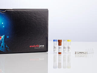 RoboGene HCV RNA Quantification Kit 30